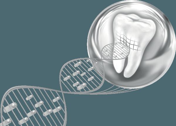 gum disease dentist